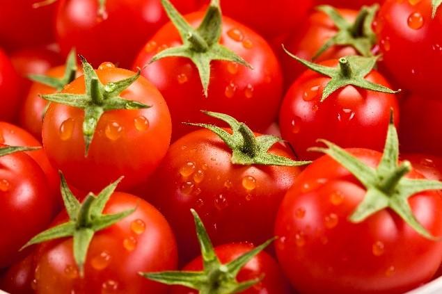 Пресни домати