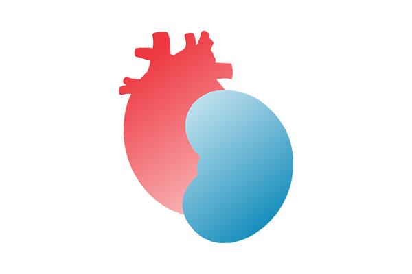 Бъбречно заболяване и сърдечна функция