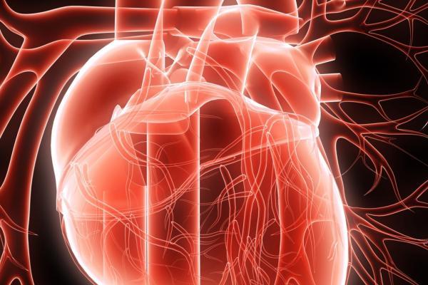 Диабет и сърдечна недостатъчност